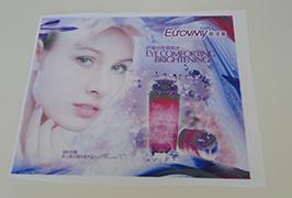 Flag Cloth banner skrevet av 1,6 m (5 fot) eco solvent skriver WER-ES160 4