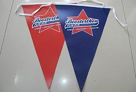 Flag Cloth banner trykt av 1,8 m (6 fot) eco solvent skriver WER-ES1801 2