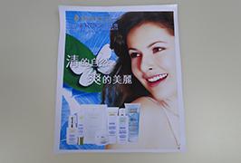 PVC-banner trykt med 3,2 m (10 fot) eco solvent skriver WER-ES3201 3
